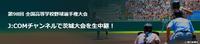 高校野球.png